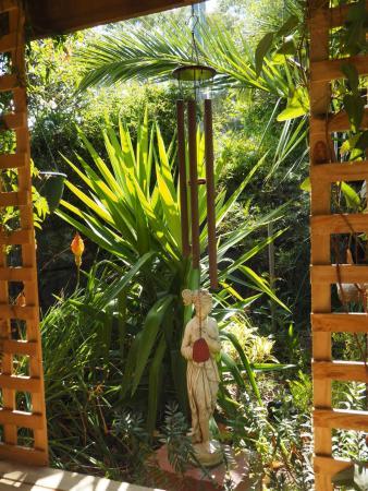 Ventnor, Australia: Garden