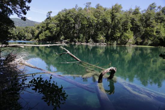 Los Alerces National Park, Argentina: Rio Arrayanes
