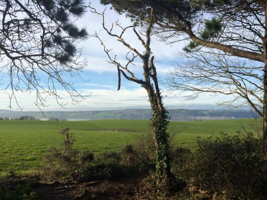 Dunbrody Country House Hotel: WW view