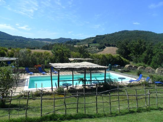 Micciano, Italia: piscina, the pool!