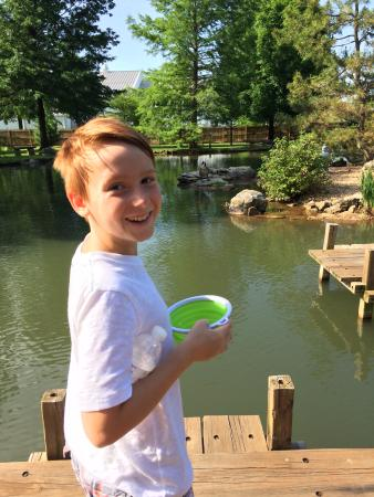 Nathanael Greene/Close Memorial Park: My son got some duck food at the entrance and enjoyed feeding the friendly ducks.