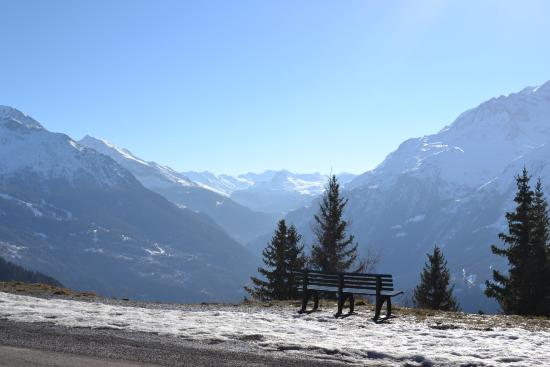 Chalet Bruyere: Amazing views!
