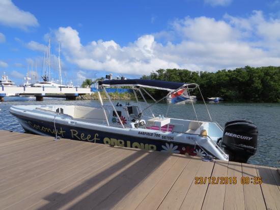 Simpson Körfezi, St-Martin / St Maarten: Barco do Coconut Reef