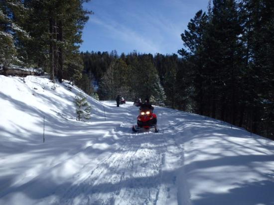 Alpine, AZ: Snowmobiling