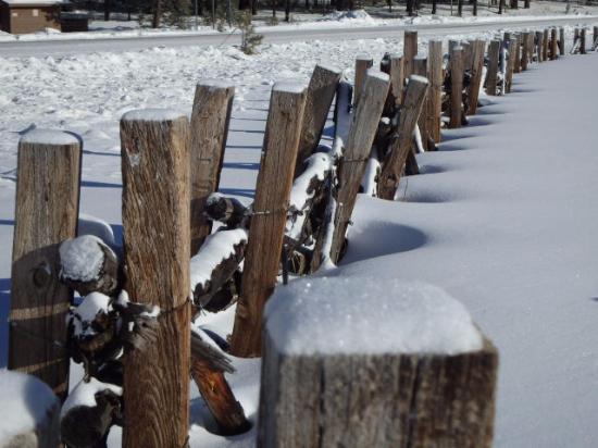Alpine, AZ: Winter wonderland
