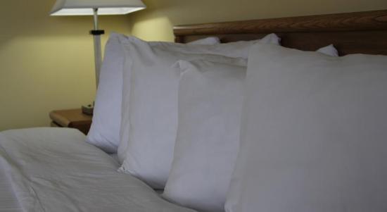 Cadillac, MI: Bed