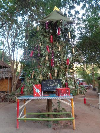 Lanta Clayzy House : Christmas Tree :)