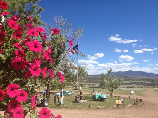 The Starlite Campground: Clear blue Colorado skies