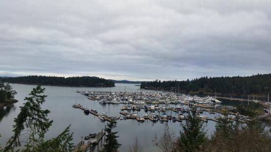 Roche Harbor Resort: Roache Harbor-view from the main road