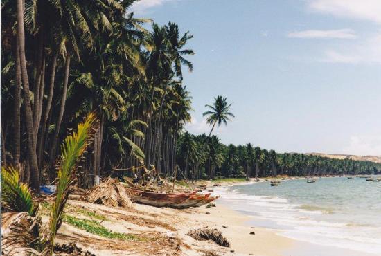 Coco Beach Resort: Strand Coco Beach 1999