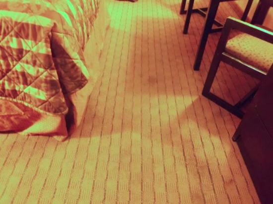 Magnuson Hotel Brownsville: stained carpeting in room