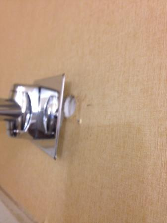 Etowah, TN: Shower rod bracket barely hanging on wall.
