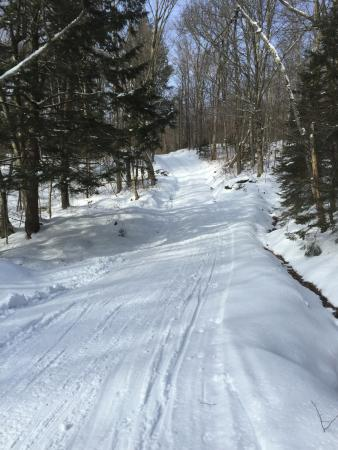 Stowe Mountain Resort Cross-Country Touring Center