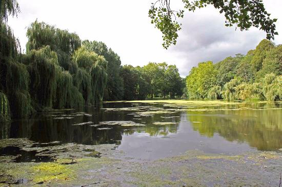 Saint-Gabriel-Brecy, France : il lago