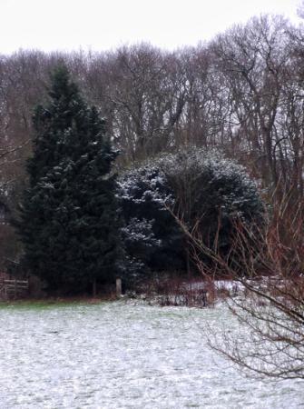 Kelham, UK: View from Side Window, Room 5