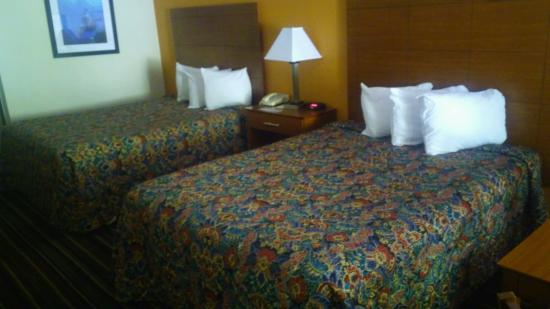 Days Inn Lake City I-10: Queen Size Beds