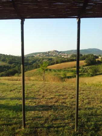 Montegabbione, Italia: Dalla finestra della nostra suite