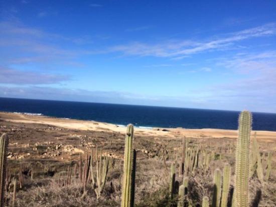 Paradera, Aruba: North shore