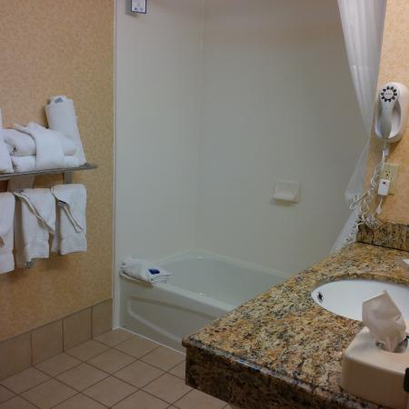 Wyoming, MI: Bathroom
