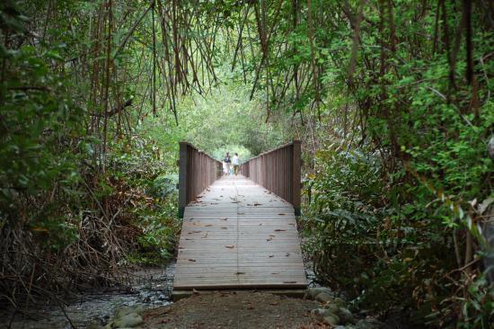 Guayas Province-billede