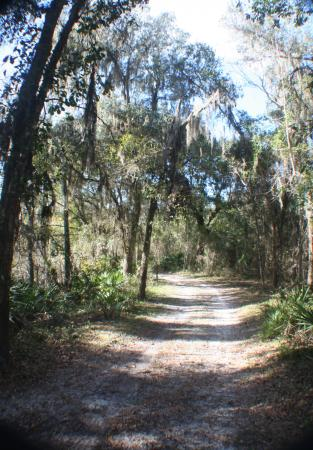 Bowling Green, FL: The Peace River Trail