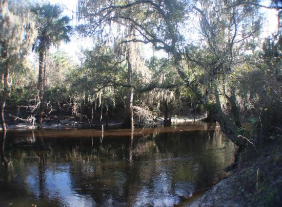 ‪Paynes Creek Historic State Park‬