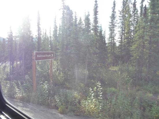 McKinley Explorer: On the way to Denali Train Depot