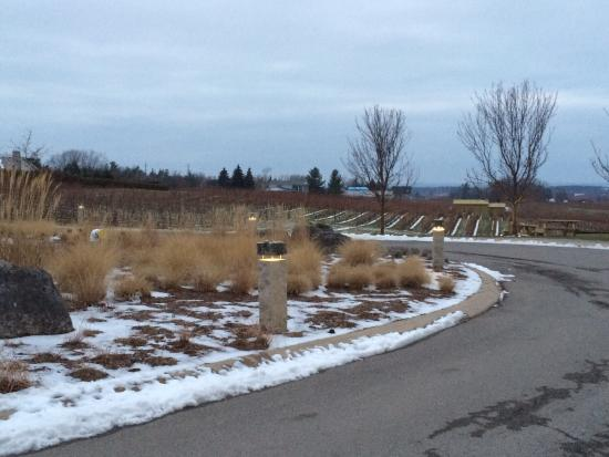 Tawse Winery: photo0.jpg