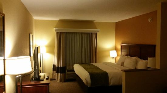 Comfort Suites Ocala: Very comfortable room!