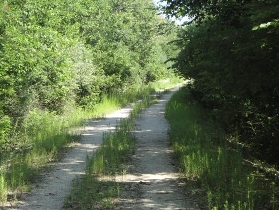 Algoma, WI: North Section of Trail