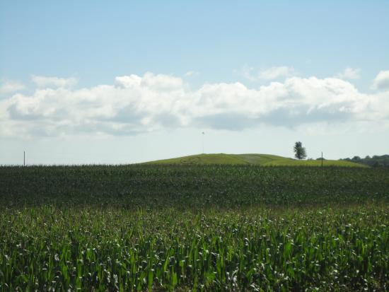Algoma, WI: smile on the hill