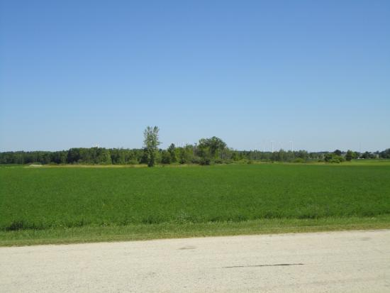 Algoma, WI: Typical Farm Field
