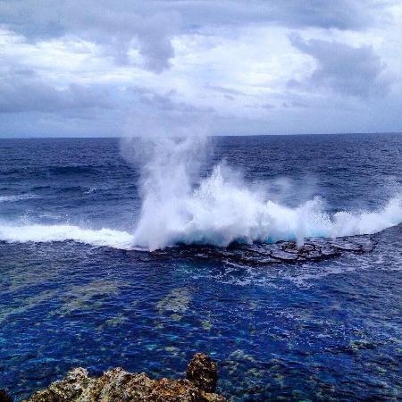 Tongatapu Island Resmi