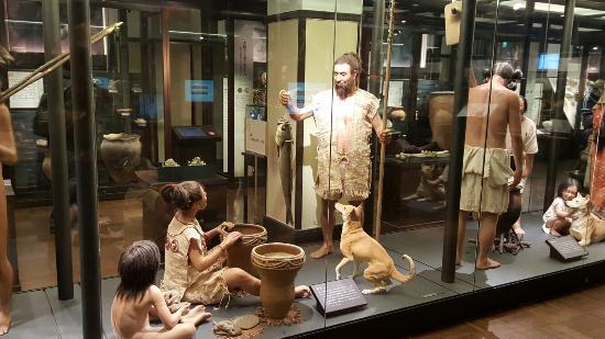 Tokyo National Museum: 20160120_144411_large.jpg