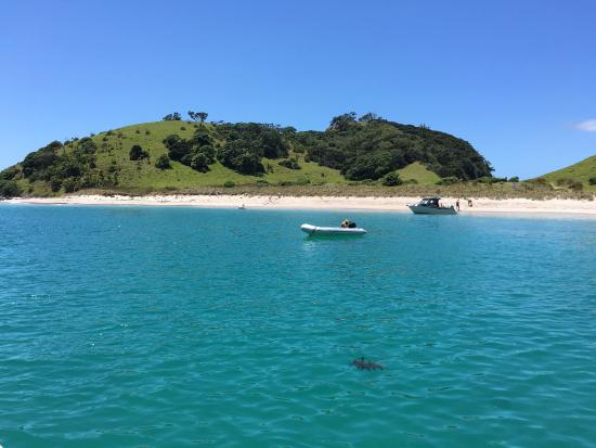 Kingfisher Yacht Charters: photo1.jpg
