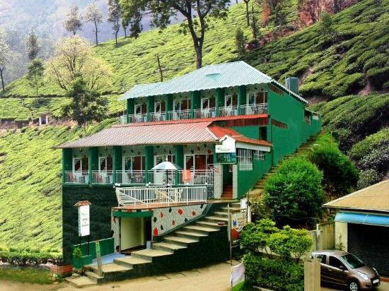 The Green Carpet Resorts & Tree House: colony road, Ikka nagar, munnar