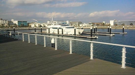 Yokohama Bay Side Marina : ヨットがいっぱい。となりはアウトレットモールです。