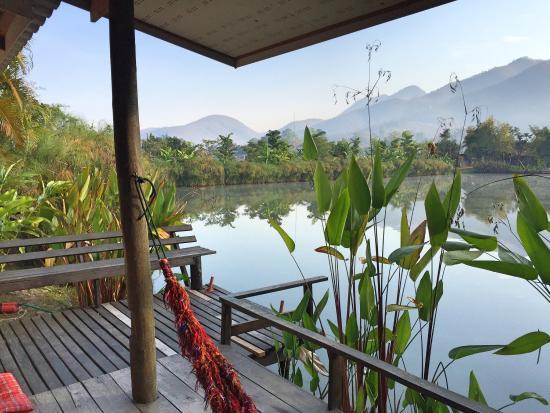 Bueng Pai Farm: photo1.jpg