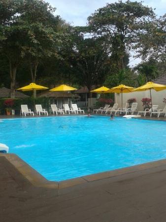Vongdeuan Resort : 20160117_092454_large.jpg