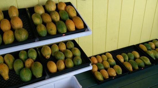 Pepeekeo, HI: ホノムとヒロの途中にあるスムージーのお店。 フレッシュなフルーツを使ったスムージーはとても美味しいです。