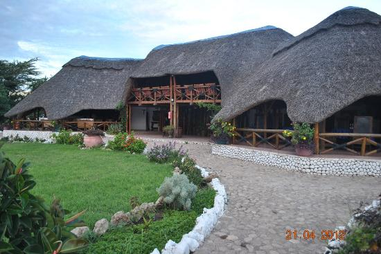 Manyara Wildlife Safari Camp: Main Area