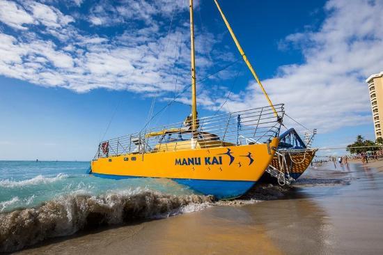 Snorkel Manu Kai - Manu Kai Catamaran