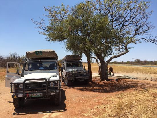 Alberton, Republika Południowej Afryki: photo0.jpg