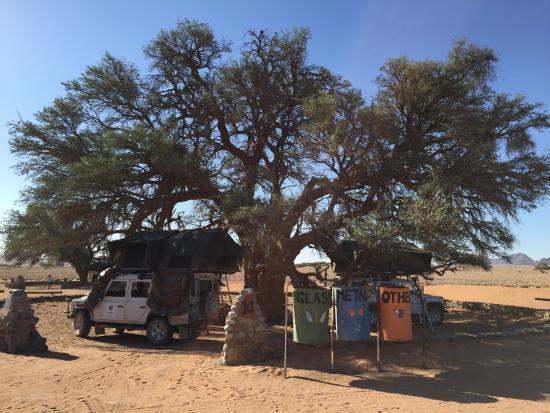 Alberton, Republika Południowej Afryki: photo3.jpg