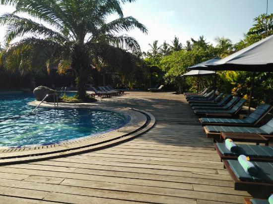 Bhuwana Ubud Hotel: IMG_20160115_082923_large.jpg