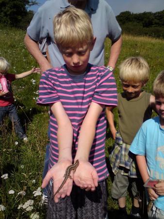 Kalundborg, Danemark : boy with lizard