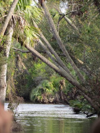Port Saint Lucie, FL: photo4.jpg