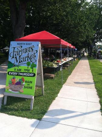 North East, Pensilvania: Summer Market Locations