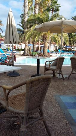 Picture of eo suite hotel jardin dorado for Suite hotel jardin dorado