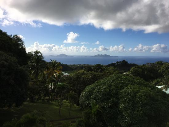 Le Jardin Malanga: photo0.jpg